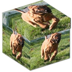 Bloodhound Running Storage Stool 12   by TailWags