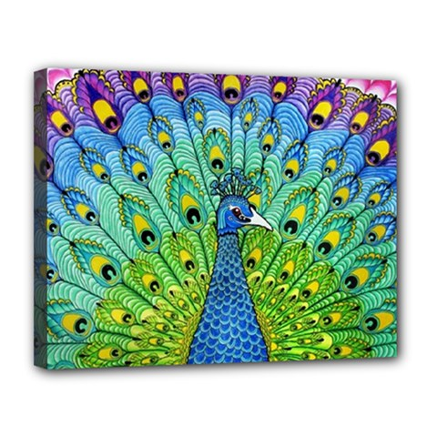 Peacock Bird Animation Canvas 14  X 11  by Simbadda