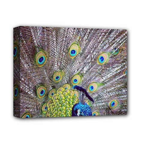 Peacock Bird Feathers Deluxe Canvas 14  X 11  by Simbadda