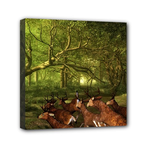 Red Deer Deer Roe Deer Antler Mini Canvas 6  X 6  by Simbadda