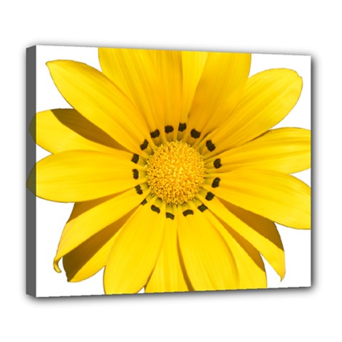 Transparent Flower Summer Yellow Deluxe Canvas 24  X 20   by Simbadda