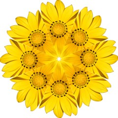 Transparent Flower Summer Yellow Hook Handle Umbrellas (large) by Simbadda