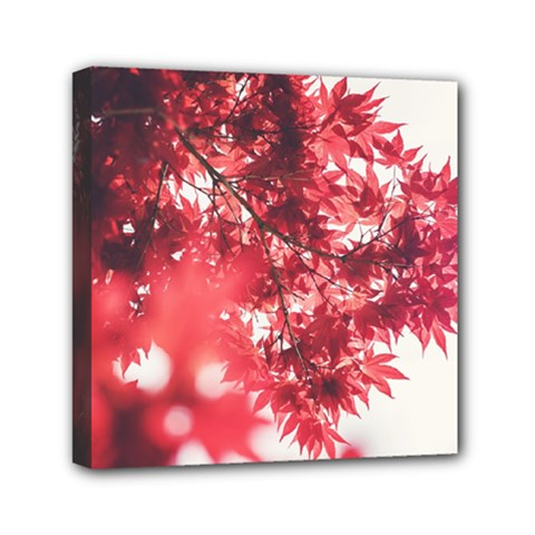 Maple Leaves Red Autumn Fall Mini Canvas 6  X 6  by Onesevenart