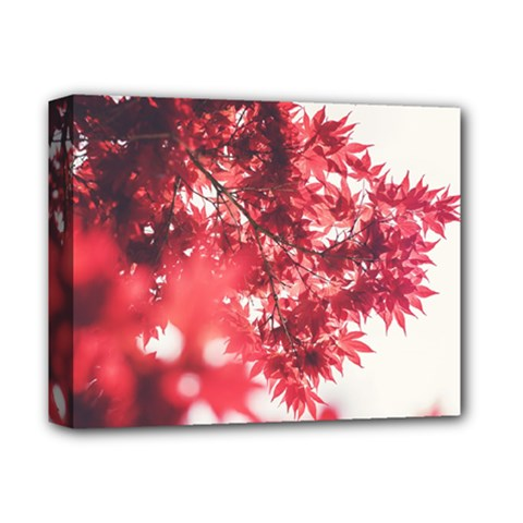 Maple Leaves Red Autumn Fall Deluxe Canvas 14  X 11  by Onesevenart
