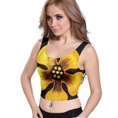 Yellow Flower Stained Glass Colorful Glass Crop Top by Onesevenart