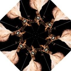 Sphynx Cat Straight Umbrellas by Valentinaart