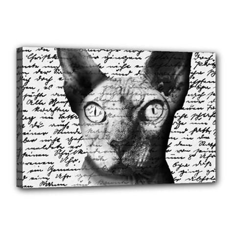 Sphynx Cat Canvas 18  X 12  by Valentinaart