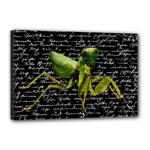 Mantis Canvas 18  X 12  by Valentinaart