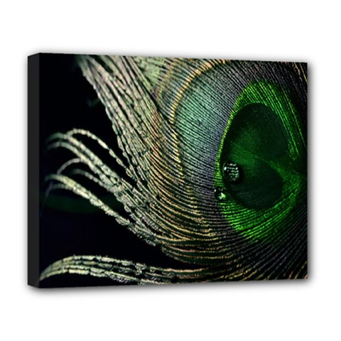Feather Peacock Drops Green Deluxe Canvas 20  X 16   by Simbadda