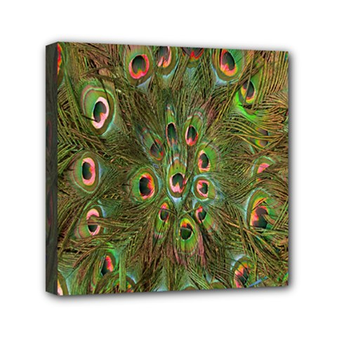 Peacock Feathers Green Background Mini Canvas 6  X 6  by Simbadda
