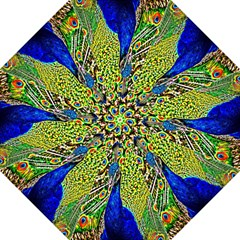 Graphic Painting Of A Peacock Straight Umbrellas by Simbadda