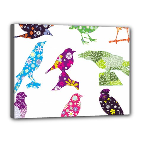Birds Colorful Floral Funky Canvas 16  X 12  by Amaryn4rt
