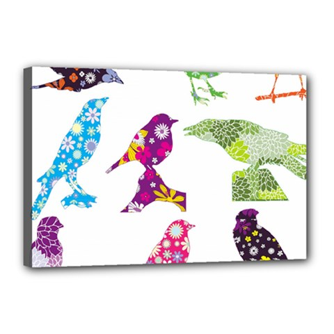 Birds Colorful Floral Funky Canvas 18  X 12  by Amaryn4rt