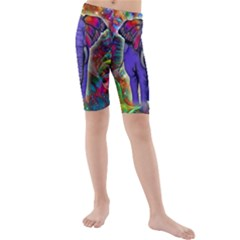 Abstract Elephant With Butterfly Ears Colorful Galaxy Kids  Mid Length Swim Shorts by EDDArt