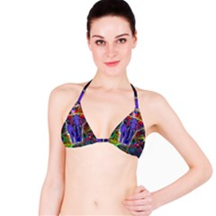 Abstract Elephant With Butterfly Ears Colorful Galaxy Bikini Top by EDDArt
