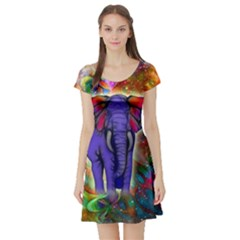 Abstract Elephant With Butterfly Ears Colorful Galaxy Short Sleeve Skater Dress by EDDArt
