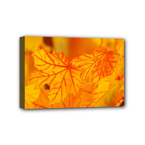 Bright Yellow Autumn Leaves Mini Canvas 6  X 4  by Amaryn4rt
