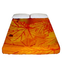 Bright Yellow Autumn Leaves Fitted Sheet (queen Size)
