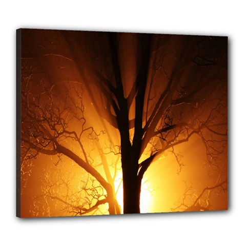 Rays Of Light Tree In Fog At Night Canvas 24  X 20  by Amaryn4rt