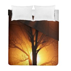 Rays Of Light Tree In Fog At Night Duvet Cover Double Side (full/ Double Size) by Amaryn4rt