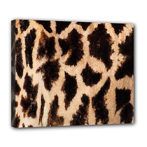 Yellow And Brown Spots On Giraffe Skin Texture Deluxe Canvas 24  X 20   by Amaryn4rt