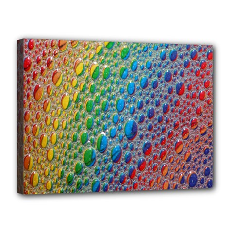 Bubbles Rainbow Colourful Colors Canvas 16  X 12  by Amaryn4rt
