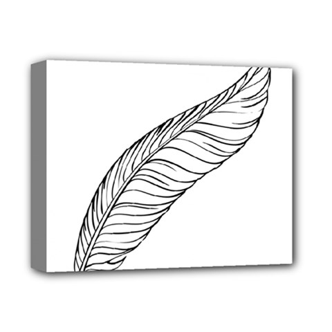 Feather Line Art Deluxe Canvas 14  X 11  by Simbadda