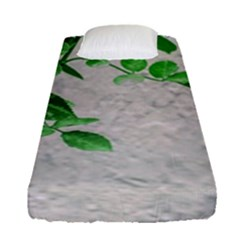 Plants Over Wall Fitted Sheet (single Size) by dflcprints