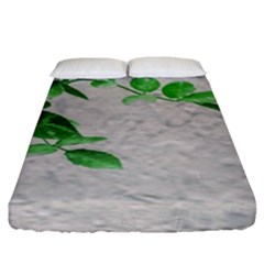 Plants Over Wall Fitted Sheet (king Size) by dflcprints
