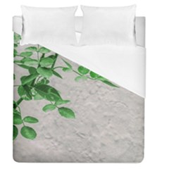 Plants Over Wall Duvet Cover (queen Size) by dflcprints