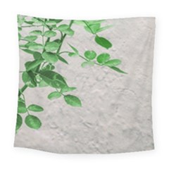 Plants Over Wall Square Tapestry (large) by dflcprints