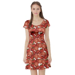 Red Vegetable Organic Food Ripe Sliced Tomato Pattern Short Sleeve Skater Dress by CoolDesigns