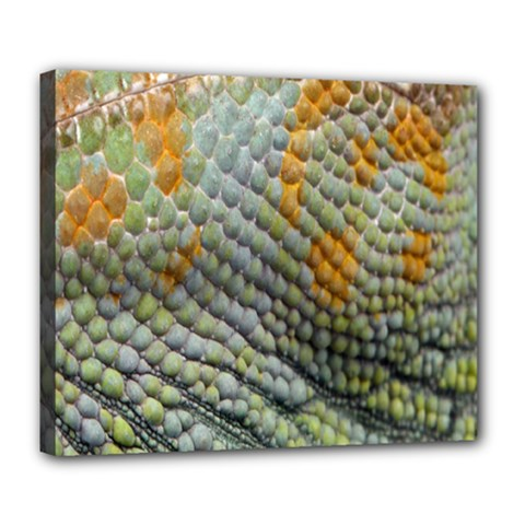 Macro Of Chameleon Skin Texture Background Deluxe Canvas 24  X 20   by Simbadda