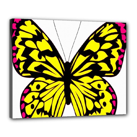 Yellow A Colorful Butterfly Image Canvas 20  X 16  by Simbadda