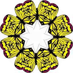 Yellow A Colorful Butterfly Image Folding Umbrellas by Simbadda