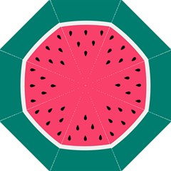 Watermelon Red Green White Black Fruit Folding Umbrellas by Mariart