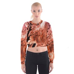 Fire In The Forest Artistic Reproduction Of A Forest Photo Women s Cropped Sweatshirt by Simbadda