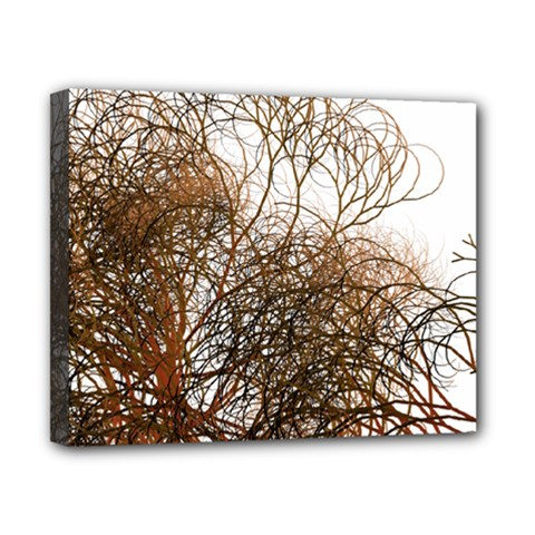 Digitally Painted Colourful Winter Branches Illustration Canvas 10  X 8  by Nexatart
