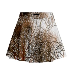 Digitally Painted Colourful Winter Branches Illustration Mini Flare Skirt by Nexatart