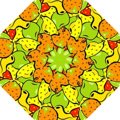 Digitally Created Funky Fruit Wallpaper Hook Handle Umbrellas (small) by Nexatart