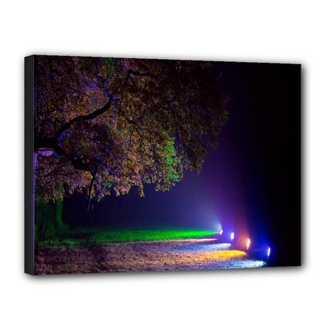 Illuminated Trees At Night Canvas 16  X 12  by Nexatart
