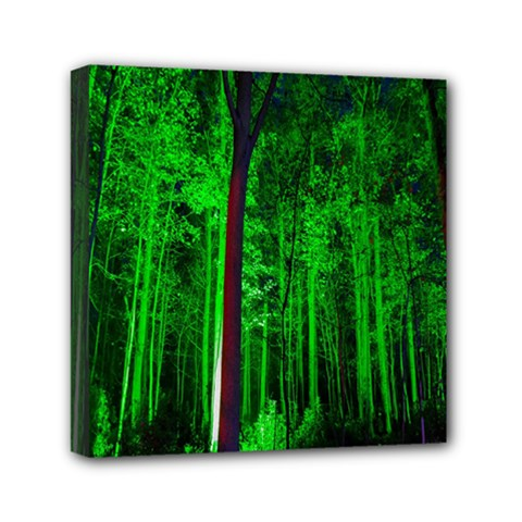 Spooky Forest With Illuminated Trees Mini Canvas 6  X 6  by Nexatart