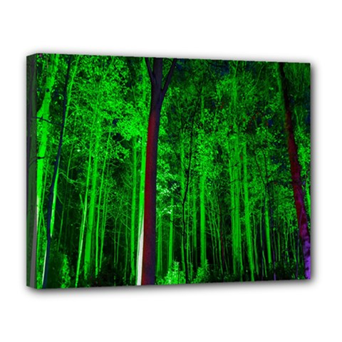 Spooky Forest With Illuminated Trees Canvas 14  X 11  by Nexatart