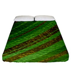 Stripes Course Texture Background Fitted Sheet (queen Size) by Nexatart