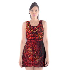 Red Particles Background Scoop Neck Skater Dress