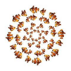 Clown Fish Hook Handle Umbrellas (large) by Valentinaart
