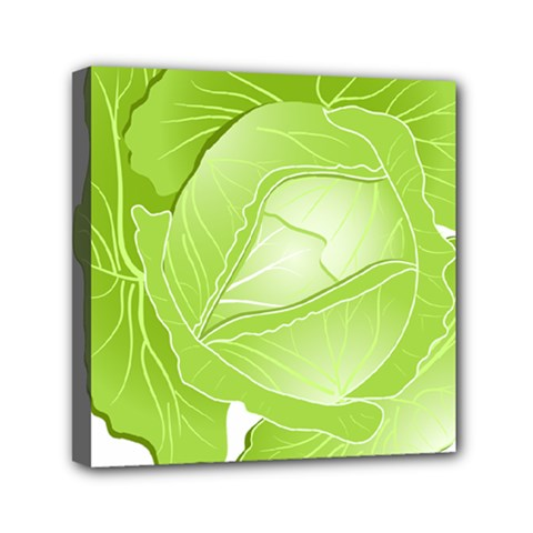 Cabbage Leaf Vegetable Green Mini Canvas 6  X 6  by Mariart