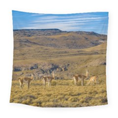 Group Of Vicunas At Patagonian Landscape, Argentina Square Tapestry (large) by dflcprints