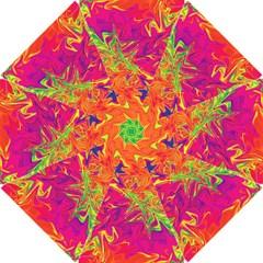 Colors Hook Handle Umbrellas (small) by Valentinaart