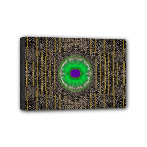 In The Stars And Pearls Is A Flower Mini Canvas 6  X 4  by pepitasart